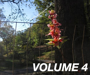 Trailer Park Quarterly, Volume 4